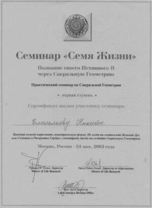 Никита Емельянов Диплом Живи в Сердце