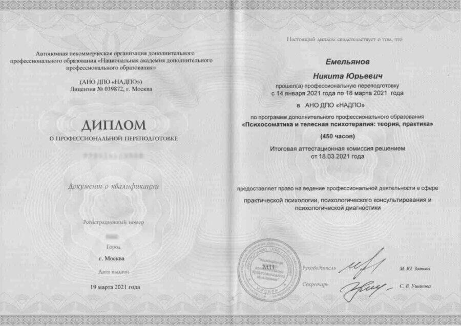 Диплом психология Емельянов Никита